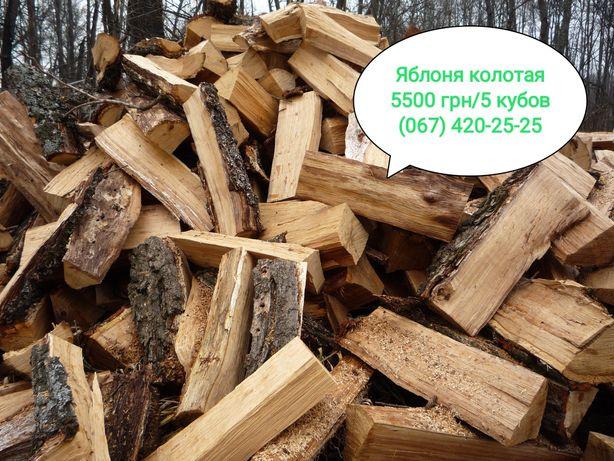 Дрова Яблоня Колотые, 5500 грн/5 кубов с доставкой