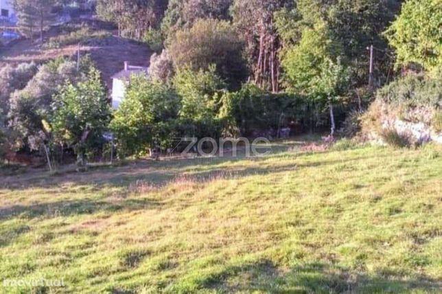 Terreno Florestal com 5534m2 Cabeceiras de Basto Para venda