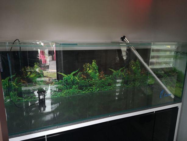 Akwarium 840l sprzedam