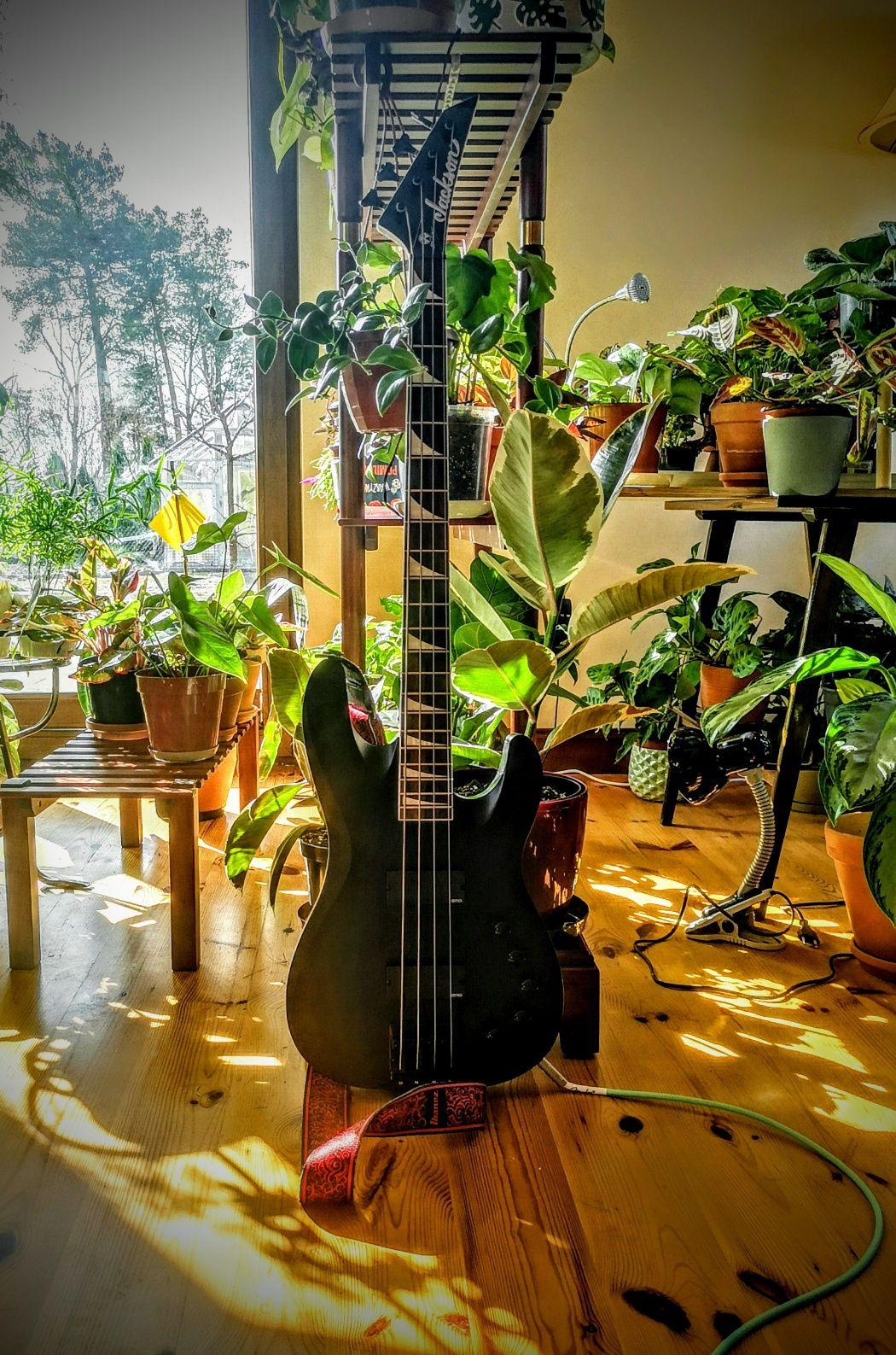 Gitara basowa jackson david ellefson cbx iv bass bas