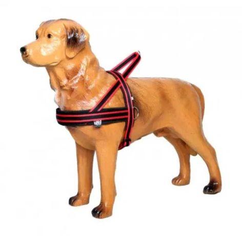 Szelki norweskie sali dla psa
