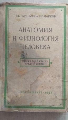 Анатомия человека 1965 год
