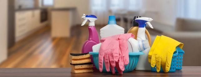 Уборка квартир и домов. Уход за комнатными растениями.