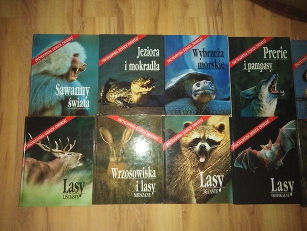 Encyklopedie dzikich zwierząt