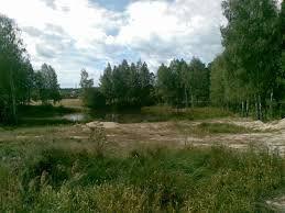 """Ясногородка, """"Слава"""". Лес. Красивейший участок с фундаментом 12соток"""