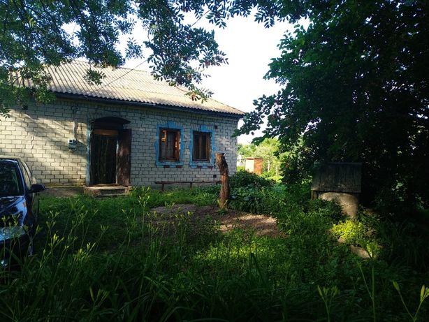 Любимый загородный дом, дача в с.Смолянка, Черниговской обл