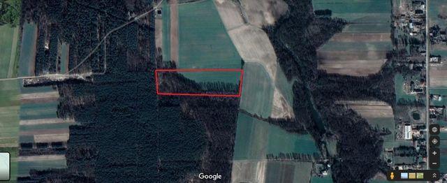 Działka rolna z lasem 2.56ha w miejscowości Gąsewo gm. Bodzanów