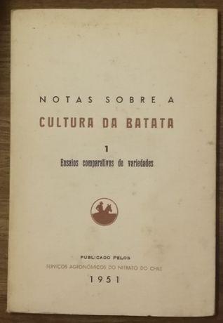 cultura da batata, ensaios comparativos de variedades, 1951