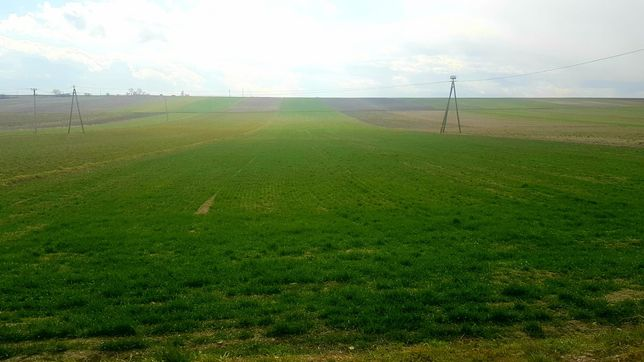 Działka budowlana rolna 14270m2 20km od Kraków