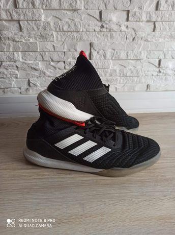 Buty halówki Adidas Predator Tango