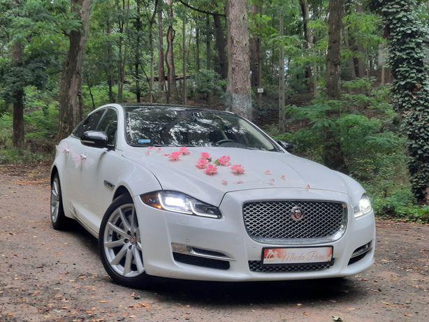 JAGUAR XJ 5.0 V8 Auto do ślubu