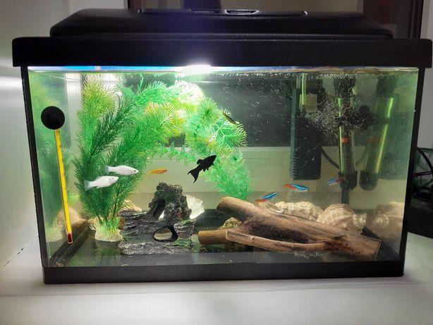 Продам аквариум . Калиновка .