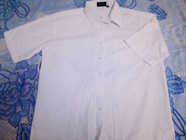 Рубашки с коротким рукавом 165-170рост.