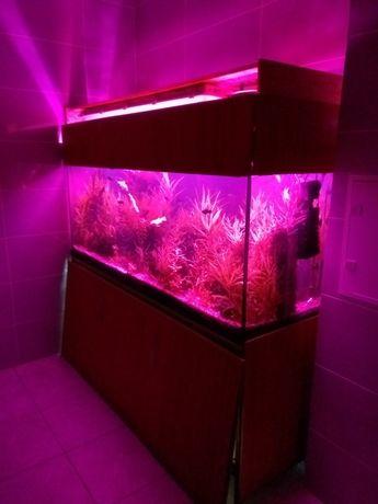 Продам аквариум 550 л с оборудованием