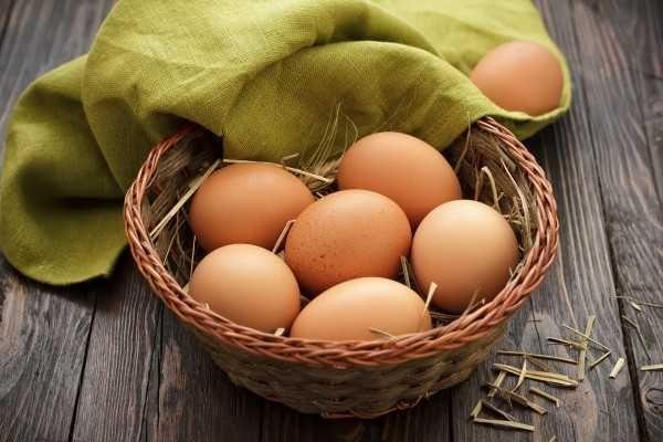 Свежие домашние яйца кур