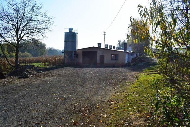 Hala magazynowo - produkcyjna w dogodnej lokalizacji (1000m2)