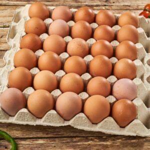 Продаю домашні яйця