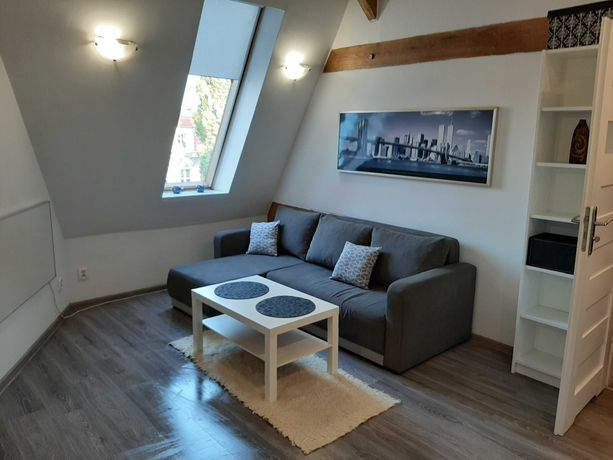 Kawalerka apartament 26m² ,ścisłe centrum, niski czynsz, WiFi