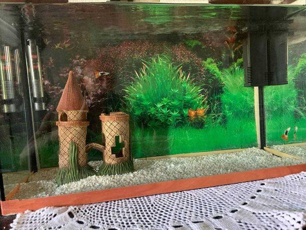 Аквариум на 60 литров для рыбок (фильтр, терморегулятор, сачек, рыбки)
