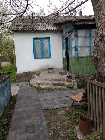 Продам дом(под дачу) в г.Носовка( Черниговская обл.)