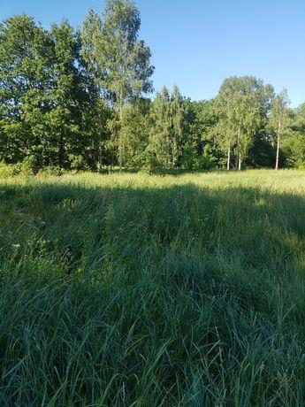 продается земельный участок под постройку с. Верхняя Сыроватка