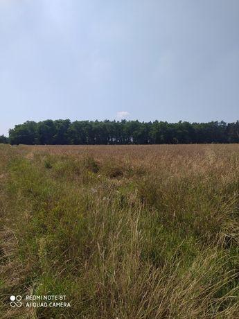 Dzierżawa gruntu pod instalację fotowoltaiczną