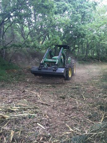 Desmatação e limpeza de floresta, matas, terrenos e árvores