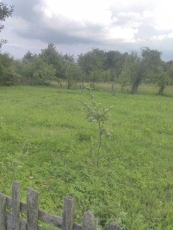 Земельна ділянка під садівництво, дача