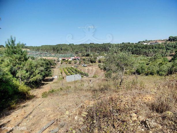 Comprar Terreno em Rio Maior