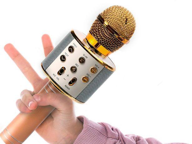 Микрофон караоке Wster WS-858 Беспроводной. Для детей и взрослых