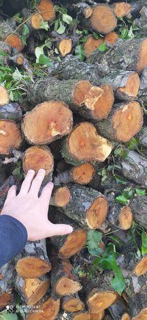 Sprzedam drzewo opałowe