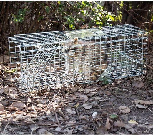 PUŁAPKA HP-0002 żywołapka na dzikie zwierzęta 80cm