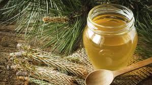 Naturalne SYROPY SOSNA MNISZEK na kaszel przeziębienie ODPORNOSC