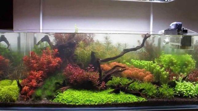 Nawóz dla roślinek Mikro+Makro 500mil
