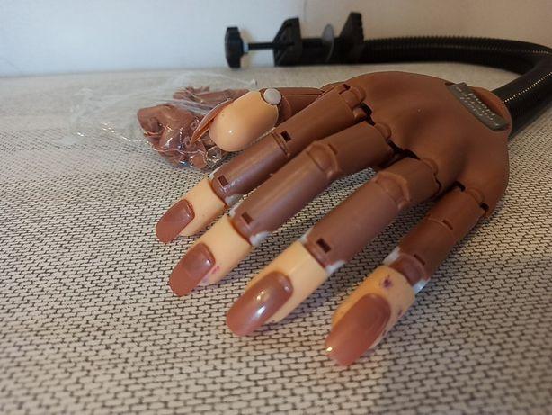 Ręka dłoń do ćwiczeń manicure + tipsy