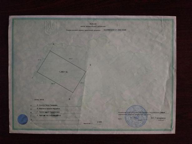 Продам земельный пай 1,2801га с.Медвин