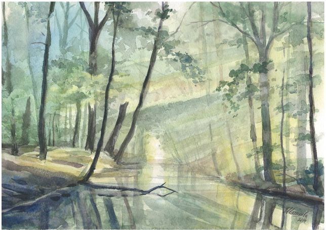 Картина Акварель - Лесное зеркало - художник Оксана Шашкова
