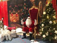 Tron Mikołaja, Sanie, renifery, dekoracje świąteczne