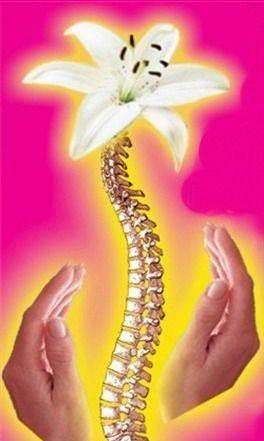 Лечебный массаж (лечение позвоночника)