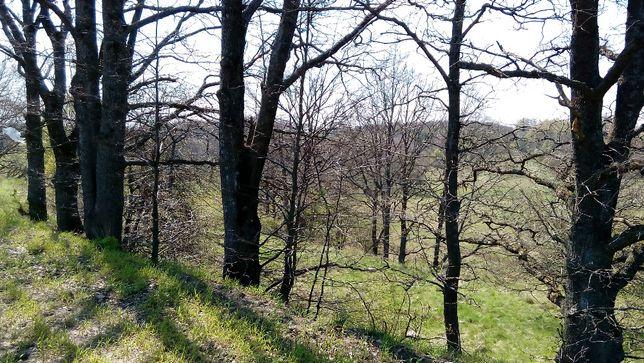 Działka rolna - pokłady żwiru 3,99ha Wierzchowo / Grąbczyn