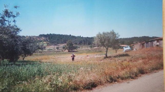 Land /Terreno