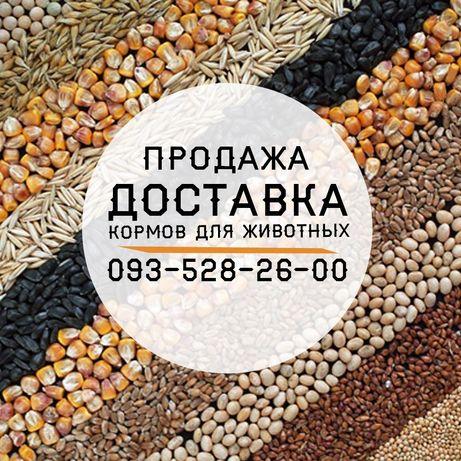 Корм,Пшеница,Кукуруза,Крупа,Сечка,Макуха,Комбикорм,Премикс,Мука,Отруби