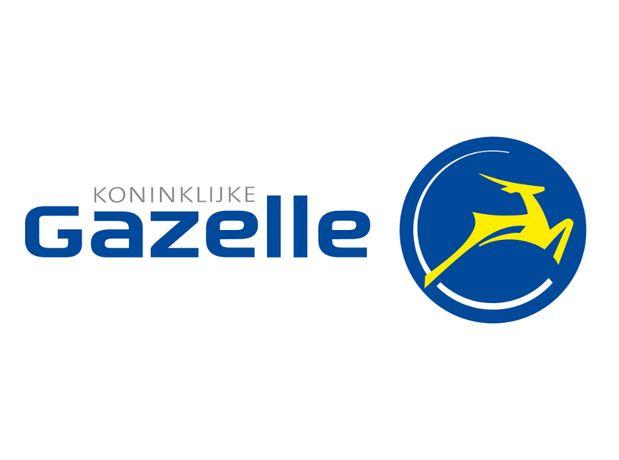 Przypisywanie-LICZNIK BATERIA itp.Rower system ION SPARTA+ Gazelle itp