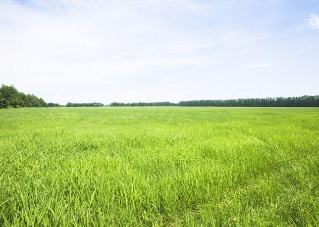Продається земельна ділянка село Іванівці