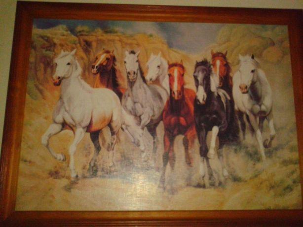 Obraz konie 75/55 cm