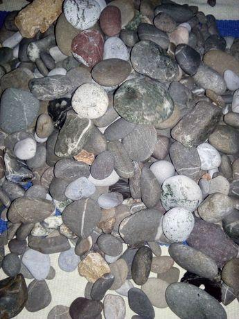 Продам камни для аквариума 5 кг