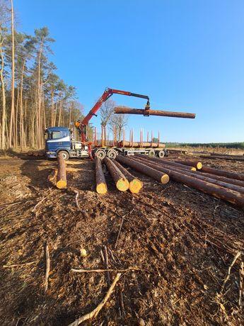 Transport drewna ,  podkłady kolejowe lubuskie / zachodnio-pomorskie