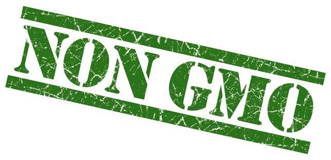 sruta sojowa extrudowana NON GMO 46% białka