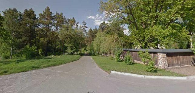 Без % 60 соток смешанного леса, вторая линия от трассы. село Таценки