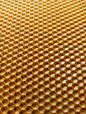 Weza pszczela